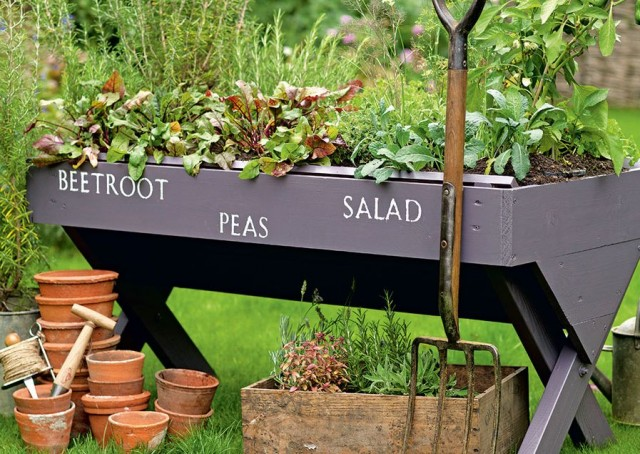 Image for article: Budget Hacks For Your Garden