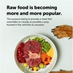 Coupon for: Mondou - Did you know? Raw food is available in all our stores